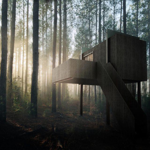 zwart modern houten huis in een bos