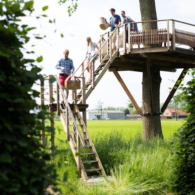 boomterras met mensen op de trap