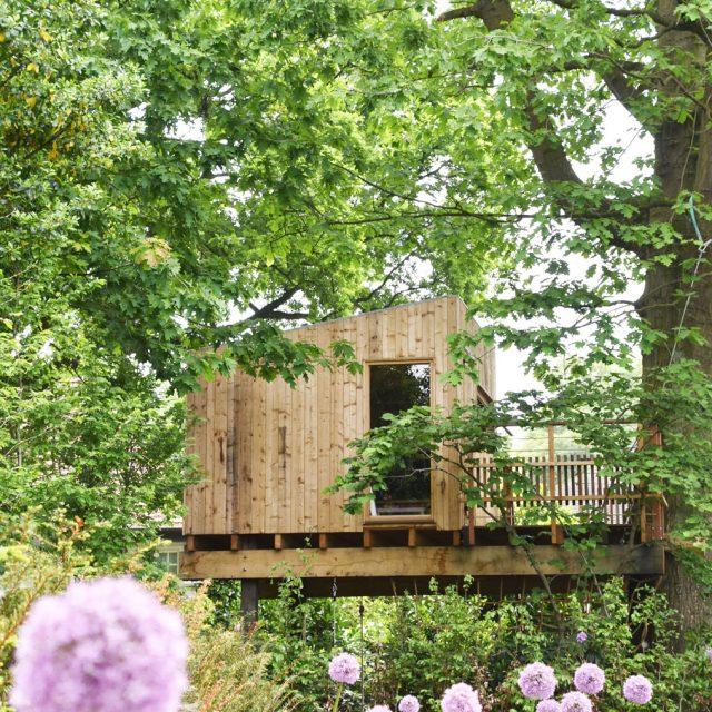 boomhut, boomterras, treehouse