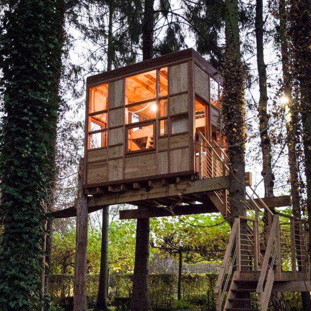 Hogerhuis - Boomhut-The cube -Tuinkantoor- Treehouse - Treeterrace- 1