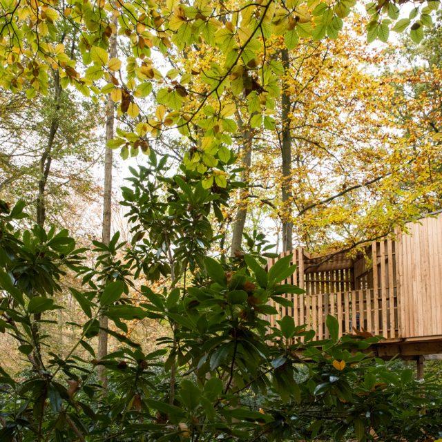 Boomterras, boomhut, hout, treehouse, speelhut, architectuur