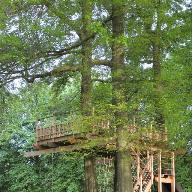 Boomterras in de bomen met trap