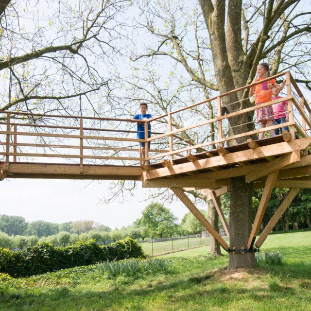 spelende kinderen op een boomterras