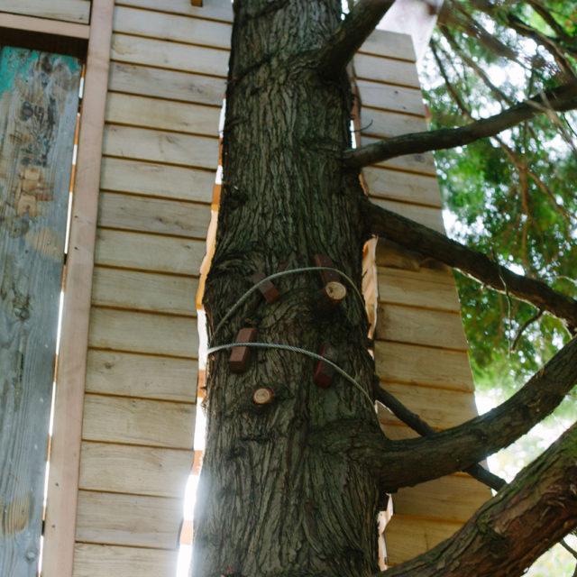 boomterras, boomhut, hout