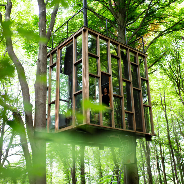 moderne boomhut met glas, modern treehouse with glass