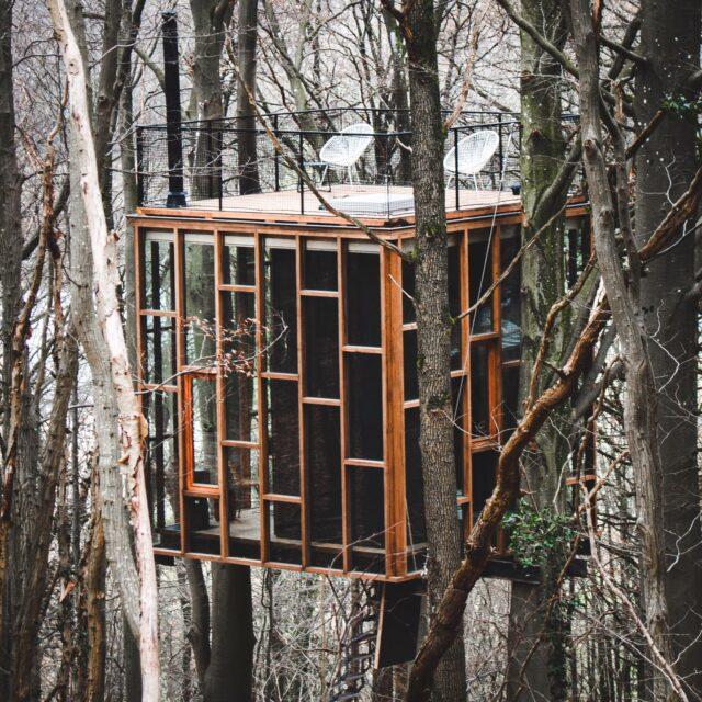 moderne boomhut met veel glas in een bos
